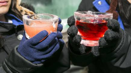 RedBalloon Ice Bar Entry with Mocktail