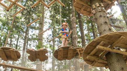 RedBalloon Children's Treetop Adventure Course - Newcastle