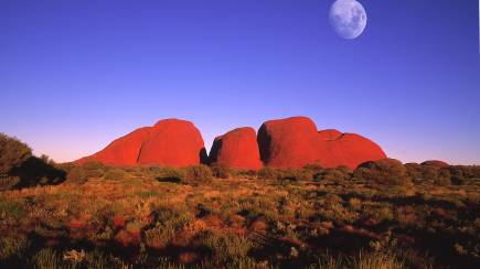 RedBalloon Uluru Tour with Sunset BBQ and Bubbles - Full Day