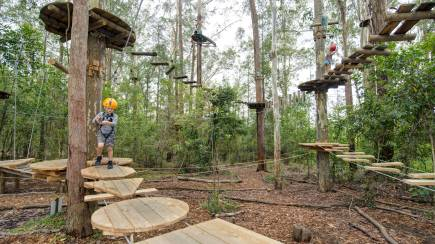 RedBalloon Children's Treetop Adventure Course - Ages 3-9