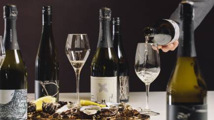 RedBalloon Moorilla Estate Private Wine Tasting with Oysters - For 2