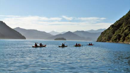 RedBalloon Queen Charlotte Sound Guided Kayak and Walk - Full Day