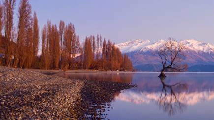 RedBalloon Arrowtown & Wanaka Historic Tour - Full Day