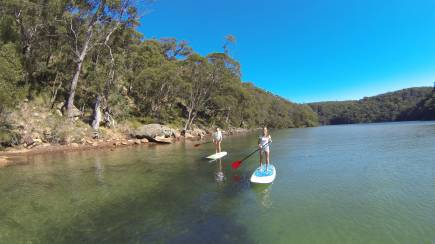 RedBalloon Stand Up Paddle Boarding Lesson and Safari
