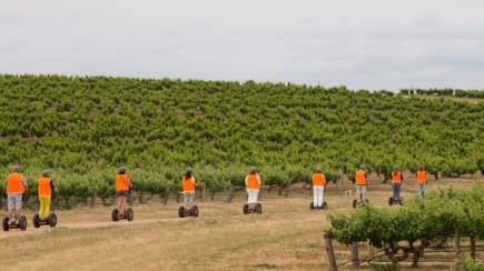 RedBalloon Segway Winery Tour in Barossa Valley - 1 Hour