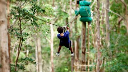 RedBalloon High Ropes and Flying Fox Adventure