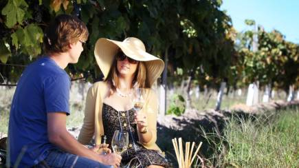 RedBalloon Wine Tasting and Picnic in the Vines with Gift - For 2