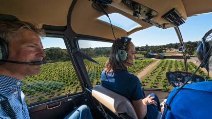 RedBalloon Private Helicopter Flight with Grazing Platter and Wine