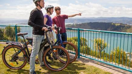 RedBalloon Electric Bays Tour - Guided Wellington Electric Bike Tour