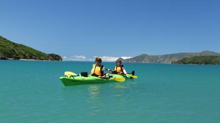RedBalloon Guided Kayak Tour of Queen Charlotte Sound - Full Day