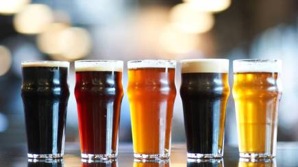 RedBalloon Craft Beer and Brewery Tour