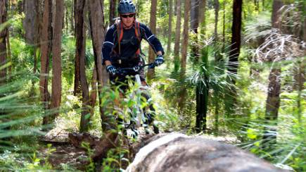 RedBalloon Margaret River Mountain Bike Forest Adventure