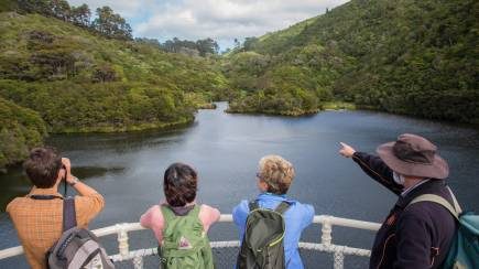 RedBalloon Zealandia Sanctuary Tour with Lunch and Wine or Beer