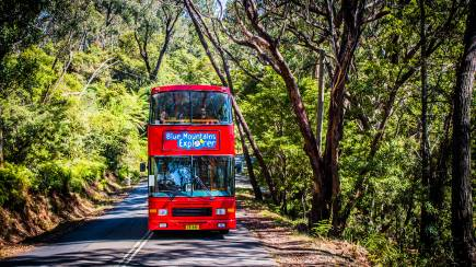 RedBalloon Blue Mountains Explorer Bus Pass and Scenic World Combo