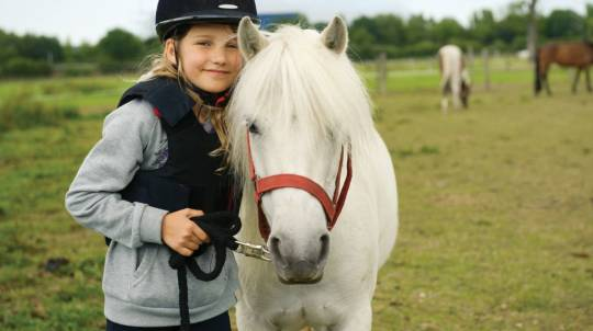 Horse Camp for Children - 3 Hours