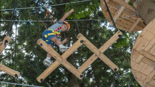 Children's Treetop Adventure Course - Abbotsbury