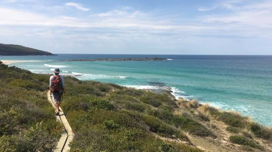Great South Coast Walk with Sydney Transfers - 3 Day Hike