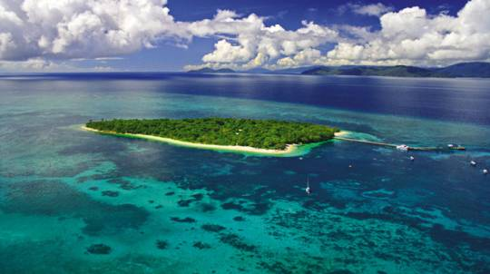 Green Island Reef Explorer Cruise with Lunch - Adult