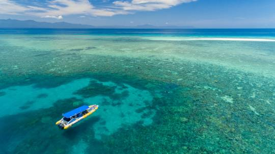 Reef Snorkelling with Overnight Stay in a Rainforest Hut