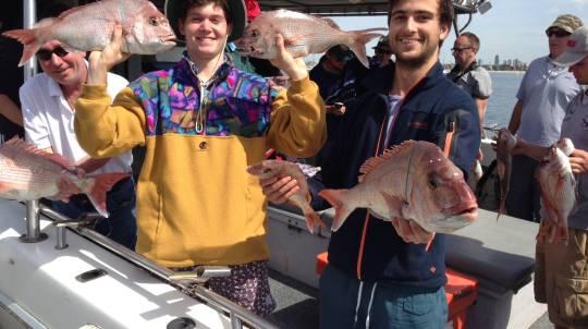 Fishing Trip - Weekdays - Half Day - For 4