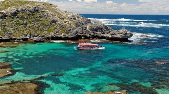 Rottnest Island - Ferry and Thrill Boat Ride - Perth - Adult