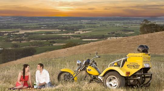 Barossa Valley Trike Tour - 3.5 Hours - For 2