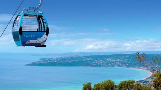 Cable Car Ride over the Mornington Peninsula - 25 Minutes