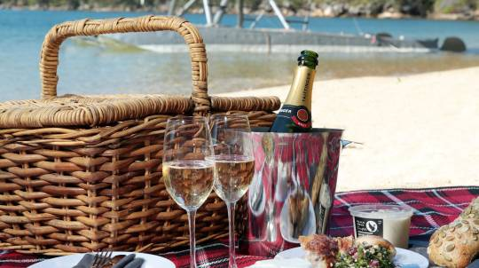 Sydney Seaplane Flight with Romantic Beach Picnic - For 2