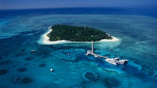 Green Island Eco Cruise with Lunch - Adult