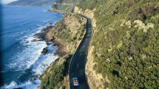 Great Ocean Road Day Tour - Family