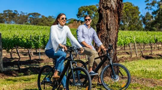 Electric Bike Hire and Gourmet Picnic Hamper in McLaren Vale
