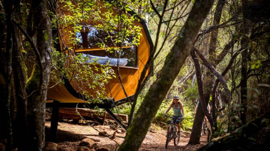 Three Day Mountain Bike Adventure from Launceston