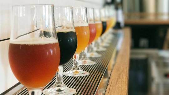 Hinterland Brewery Tour with Tastings and Lunch - 5 Hours