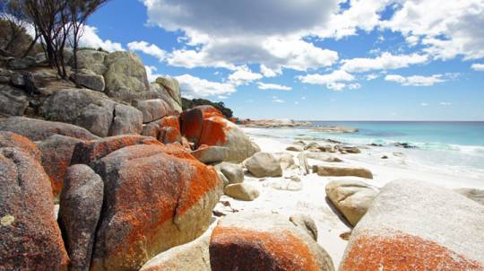 Bay of Fires Walk with Meals and Support Team 3 Days - Adult