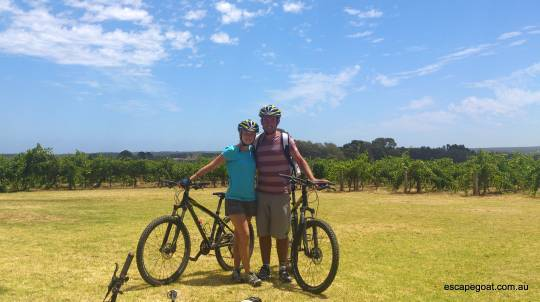 Full Day Bike Tour of McLaren Vale Wineries