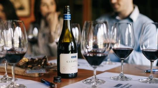 Shiraz Masterclass with Chocolate Platter - For 2