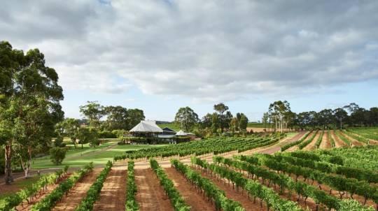Margaret River Wine Tasting Tour
