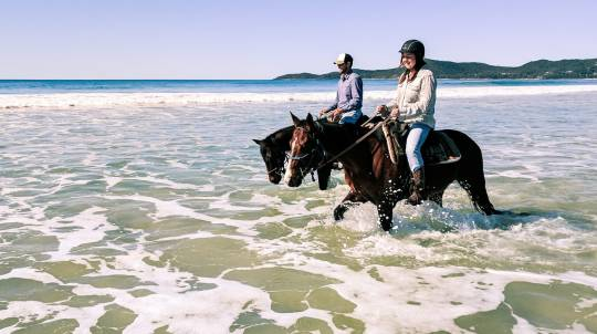 Noosa Intermediate Horse Trail Ride