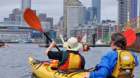 Melbourne City Sea Kayak Tour - Half Day