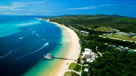 Moreton Bay Cruise with Dolphin Feeding and Whale Watching