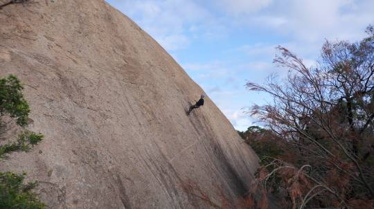 Rock Climbing and Abseiling in You Yangs Regional Park