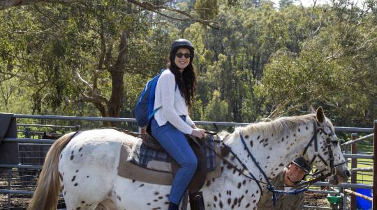 60 Minute Yarra Valley Horse Trail Ride