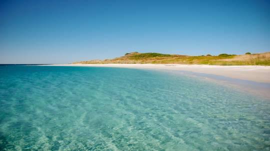 Broughton Island Snorkel Cruise - 3 Hours