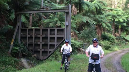 Electric Bike Tour - O'Shannassy Aqueduct Trail