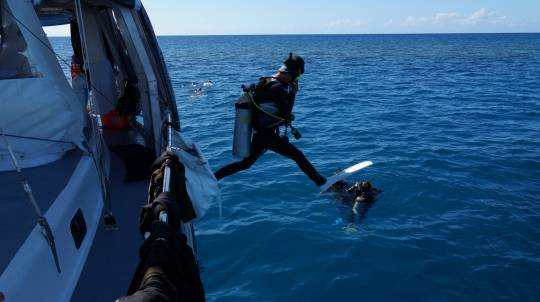 Great Barrier Reef Adventure - 2 Days