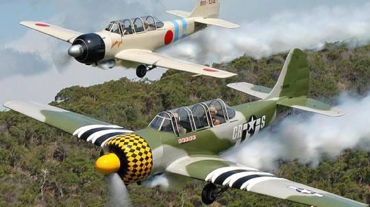 Aerobatic Warbird Flight in a YAK52 - 20 Minutes