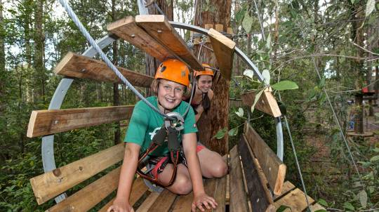 Children's Treetop Adventure Course - Central Coast