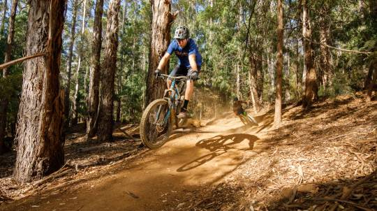 Margaret River Mountain Bike Forest Adventure