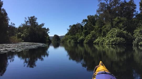 Noosa Everglades Self Guided Canoe or Kayak Safari