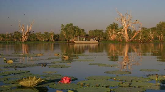 Wetland Wildlife Cruise - Full Day
